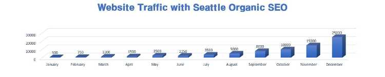 Seattle Organic SEO
