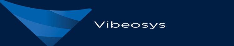 Vibeosys Software Pvt Ltd