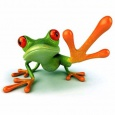 Cyberfrog Design