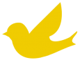 Canary Software