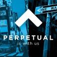 Perpetual Strategic Services