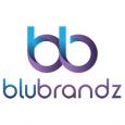 BluBrandz Solutions