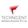 Technigent Software Solutions Pvt Ltd