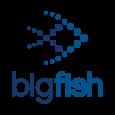 Big Fish App Development Studio