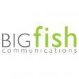 BIGfish Communications