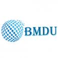 BM Digital Utilization