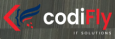 CodiFly IT Solutions