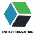 Eneblur Consulting
