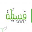 Faceela Software House