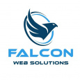 FALCON WEB SOLUTIONS PROPRIETARY LIMITED