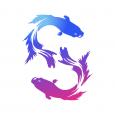 Rumble Fish Development