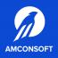 Amconsoft
