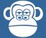 Display Monkey